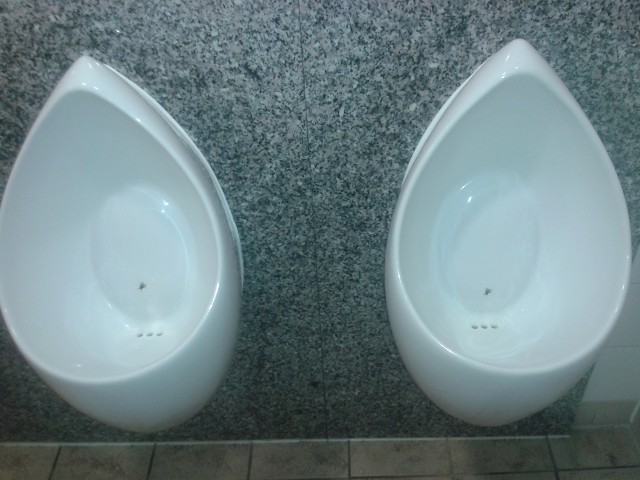 Nudge_Toilet_1
